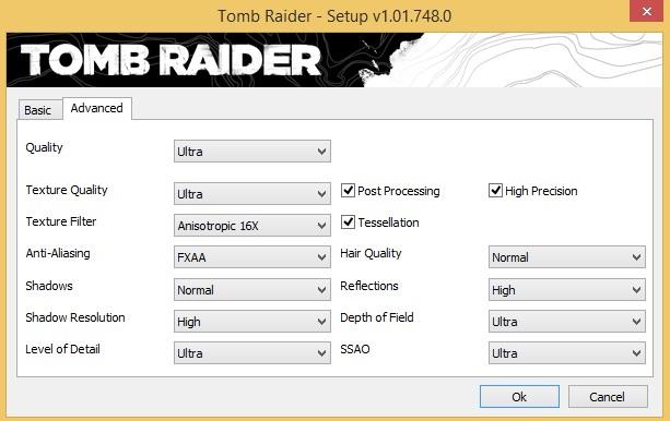 Tomb Raider Settings